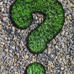 Doradca finansowy – czy warto z niego skorzystać?